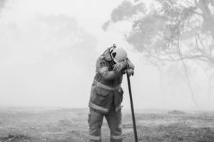 100% of our profits to be donated to the Australian Bushfires